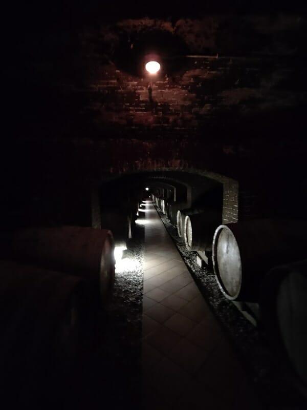 牛久シャトー地下の醸造室